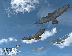 Soaring birds - animals for environment 3D model
