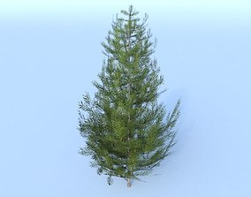 Tree pine low-poly 3D model realtime