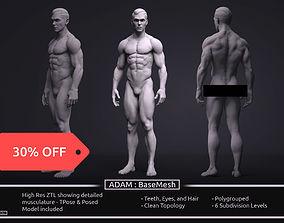 3D model Male BaseMesh - Adam