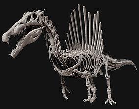 3D Spinosaurus Full Skeleton Sculpt Model