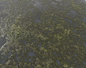 soil Water with algae PBR 3D