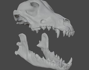 3D printable model Gray Wolf Skull