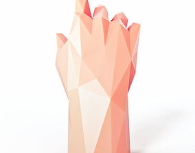 Hand Pose 1 Low Poly 3D asset