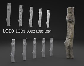 3D asset Scanned Piece Of Wood Log LOW POLY