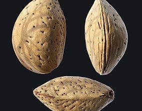 Almond Shell A 3D model