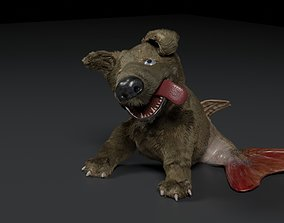 Dogfish 3D model