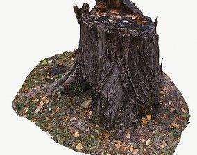 low-poly poly 3D scan BPR tree stump 02