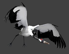 3D Red-crowned crane