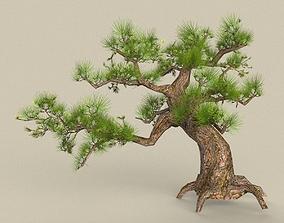 3D model realtime Tree 02