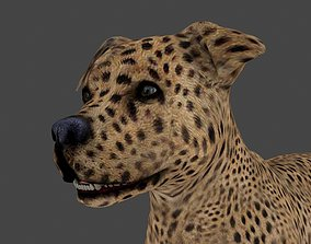 MPIT-007 Animated Dog 3D model