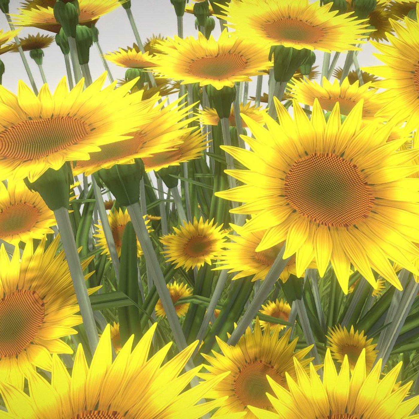 Public Plant Pot Wood-Version with Sunflowers