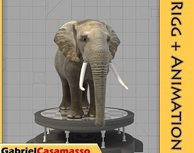 Elephant 3D model animated VR / AR ready