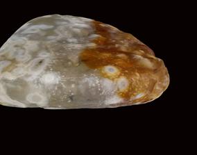 Lace Agate gem 156 3D