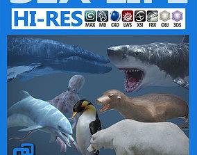3D model Pack - Sea Life