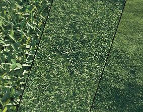 glade Grass 3D