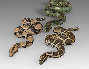 Pythons Vol 1 Rigged 3D model realtime