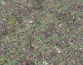 Forest ground PBR Pack 10 3D field