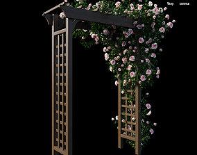 3D model Rose plant set 20