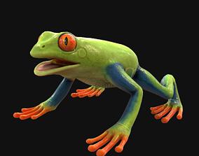 3D asset Frog Green