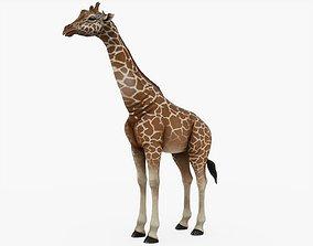 3D model VR / AR ready Giraffe