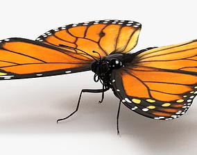 3D model Monarch Butterfly monarch
