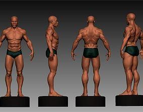 3D anatomia masculina