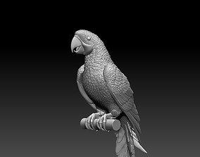 3D print model parrot