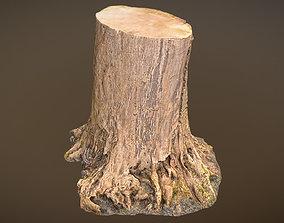 3D model VR / AR ready Tree Stump