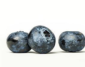 3D Blueberry 002