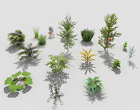3D model realtime low poly plants collection