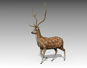 3D asset game-ready Deer Animated
