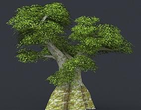 3D asset Low Poly Tree 02