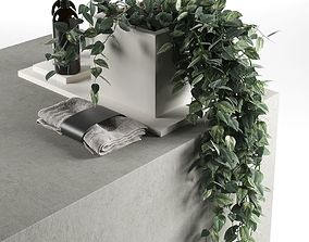Plants with Body Care Products 3D model