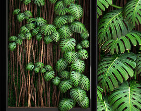 3D model Vertical gardening Monstera