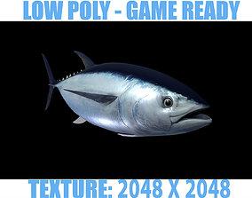 3D model Tuna fish