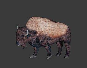 3D model rigged Bison