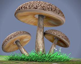 mushrooms 3D asset low-poly