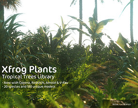 2020 XfrogPlants Tropical Trees Library 3D papaya