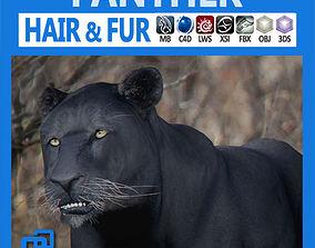 3D Panther