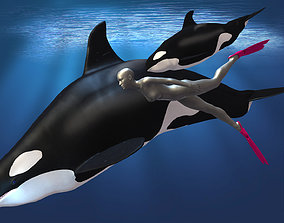 Orca Ocean Scene for Daz Studio 3D asset