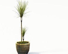 3D model Plant 24 AM24