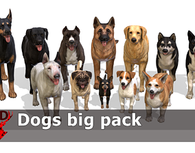 Dogs big pack 3D