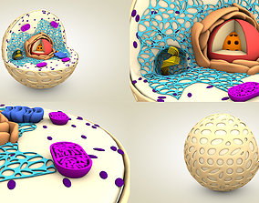 cinema4d Animal Cell 3D Model