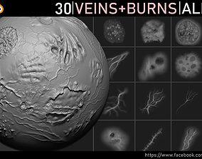 3D model Veins and Burns Alphas