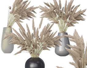 Dried flowers grass in a glass vase 3D model