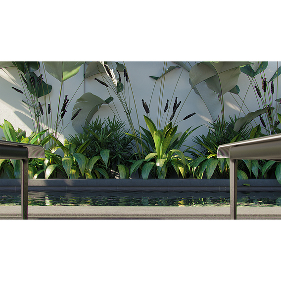 Globeplants bundle 05 : Tropical scene