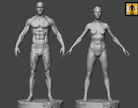 print Male and female anatomy models pack