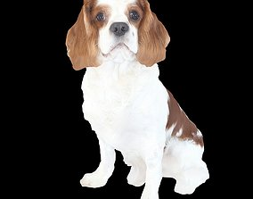 Puppy Brown 3D print model