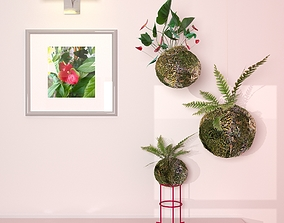 Kokedama Plant 3D model
