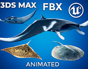 3D model Stingray and Manta Ray Pack - UE4